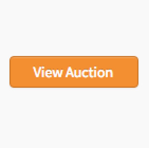 BANKRUPTCY ON-LINE ONLY AUCTION