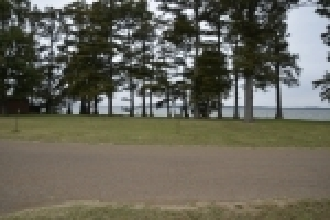 2 Waterfront Lots - Reelfoot Lake