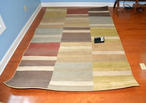 "SIMPLICITY AREA RUG - 63.5"" WIDE x 93"" LONG"