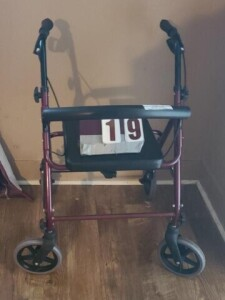 ROLLING WALKER HANDICAP CHAIR